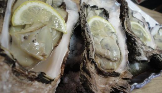 コスパ最高!日本海の新鮮な海鮮料理が市場よりも安い!舞鶴「富田屋」