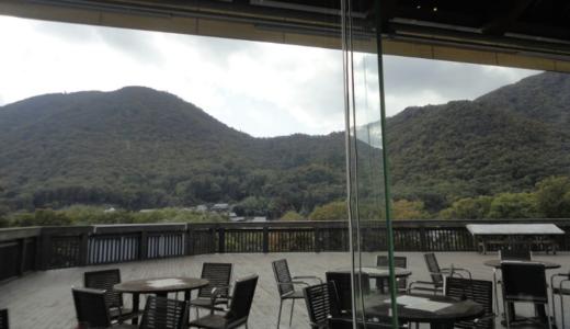 篠山の穴場!パスタならダイニングカフェ「虚空蔵」がおすすめ。丹波立杭焼エリアの観光にもちょうどいいよ